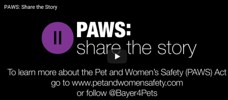 PAWS share the story video link
