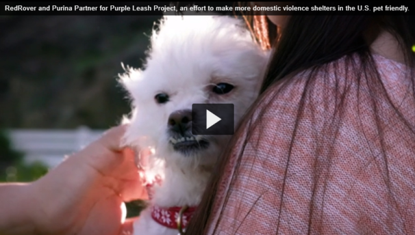 RedRover and Purina Partner for Purple Leash Project Video